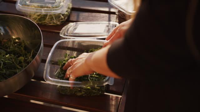 Woman putting pea shoots microgreens into a bowl