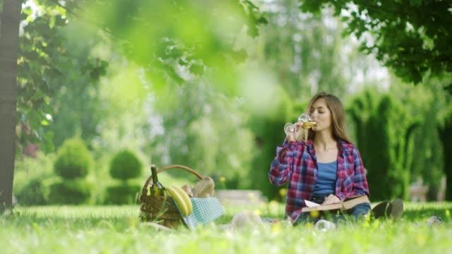 kvinna läsa bok och dricka vitt vin på picknick i parken - vitt vin glas bildbanksvideor och videomaterial från bakom kulisserna