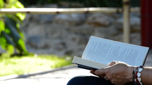 Woman reading book in a park Person reading book in a park religious text stock videos & royalty-free footage