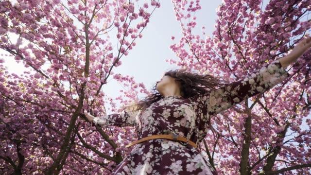 kvinna slappna av i blommande trädgård - klänning bildbanksvideor och videomaterial från bakom kulisserna