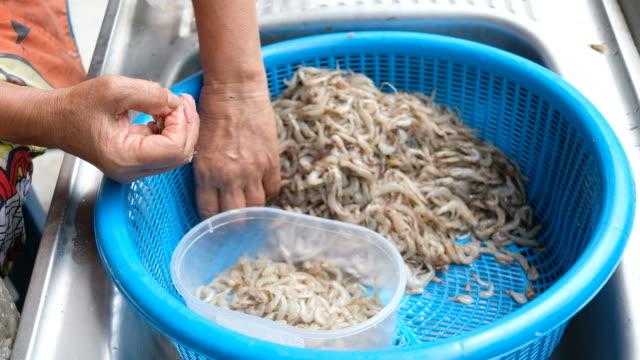 vídeos de stock, filmes e b-roll de a mulher remove o escudo dos shrimps na cesta - descascado