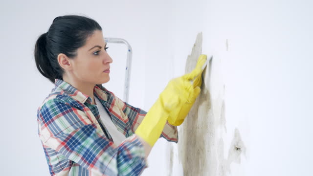 Woman removing old paint. Young woman working at home. She is repairing a damaged wall, removing the paint. renovation stock videos & royalty-free footage