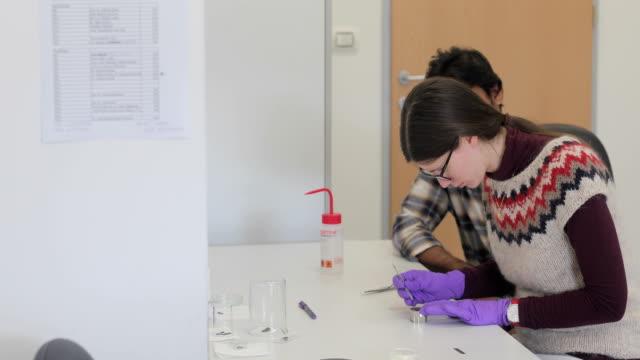 vídeos de stock, filmes e b-roll de mulher pesquisador análise científica amostra enquanto estudante relógios her - amostra científica