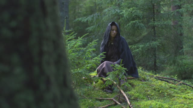 woman resting in the forest - family trees stock videos and b-roll footage