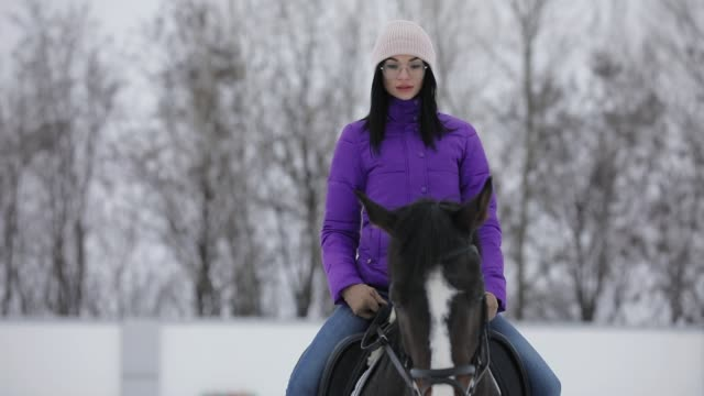 woman rider walking horseback with horse at snowy winter day - briglia video stock e b–roll