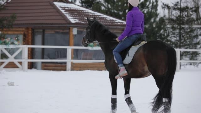 woman rider walking horseback with horse at snowy winter day - siodło filmów i materiałów b-roll