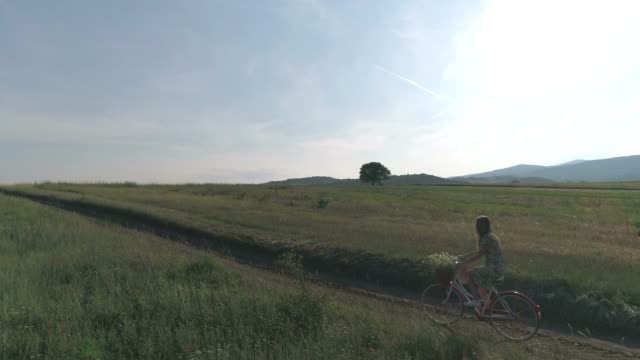 woman riding a bike in countryside - cestino della bicicletta video stock e b–roll