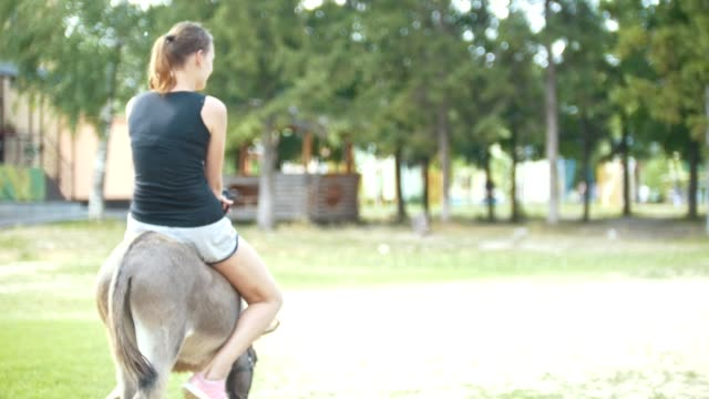 a woman riding a donkey in the stables - stallone video stock e b–roll