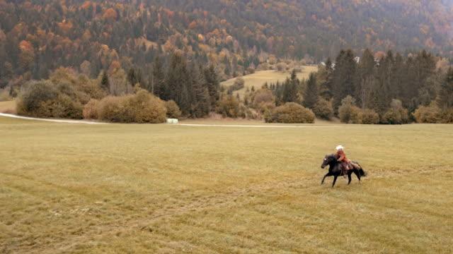 AERIAL femme monté sur un cheval au galop dans un pré - Vidéo