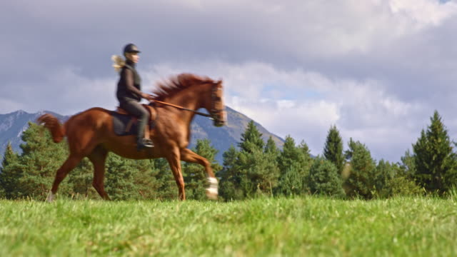 SLO MO DS Woman riding a galloping horse on mountain meadow Slow motion medium low angle dolly shot of a woman riding her galloping horse across a mountain pasture in sunshine. horseback riding stock videos & royalty-free footage