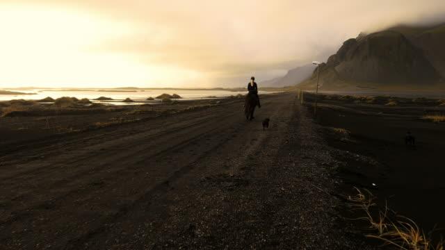 Femme chevauchant un cheval sur plage Stokksnes - Vidéo