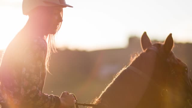 Woman riding a horse at sunset video