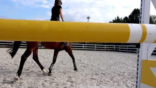 kvinna ridning en häst i jumper ring - hästhoppning bildbanksvideor och videomaterial från bakom kulisserna
