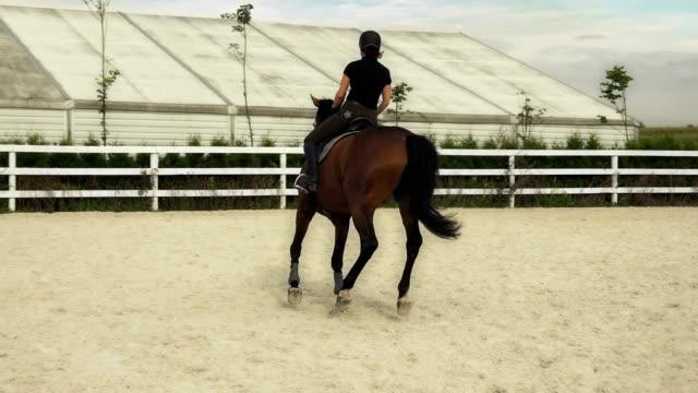 stockvideo's en b-roll-footage met vrouw rijden een paard in jumper ring - vrouwtjesdier