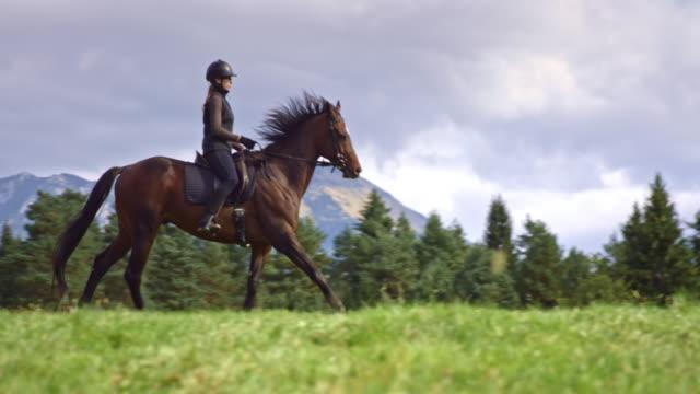 SLO MO TS Woman riding galloping horse across mountain meadow video