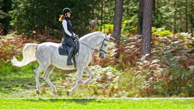 SLO MO TS Woman riding galloping white horse in nature