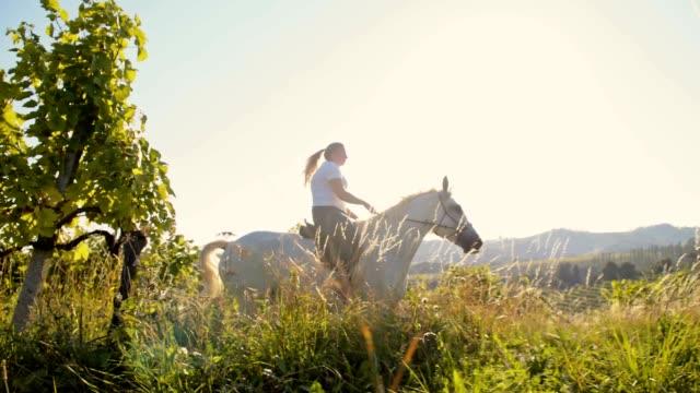 SLO MO Woman riding horse along grape trellis video
