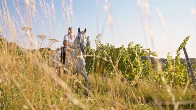 rallent donna cavalcare a cavallo nel prato - sella video stock e b–roll