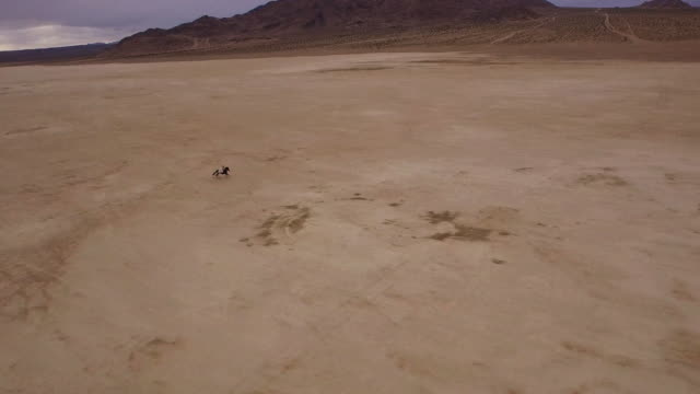 (Drone) Woman Riding Horses in the Desert 03 video