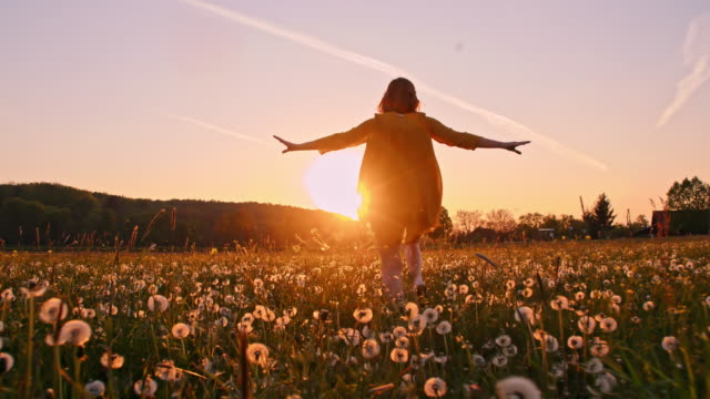 SLO MO Woman running across a meadow at sunset Slow motion tracking shot of a woman running with arms outstretched in the middle of a meadow full of dandelions at sunset. Slovenia dandelion stock videos & royalty-free footage