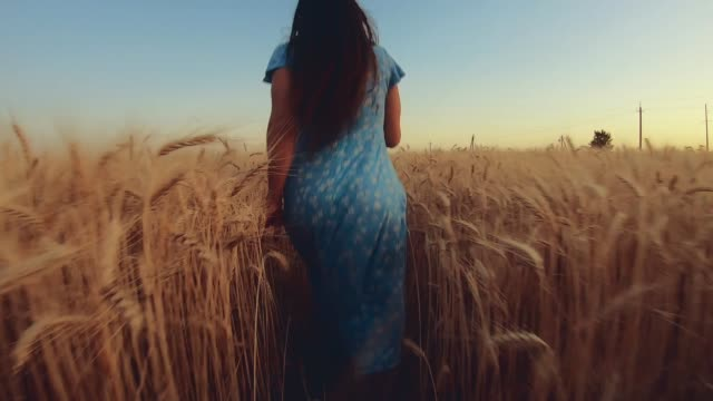 Woman running forward on a wheat field, slow motion video