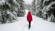 istock woman running in the snowy forest 1199795436