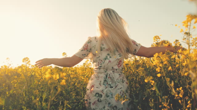 slo mo woman running through canola field with outstretched arms - colza video stock e b–roll