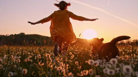 slo mo donna che corre con il suo cane attraverso un prato al tramonto - carino video stock e b–roll