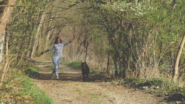 SLO MO Woman running with her dog in the forest video