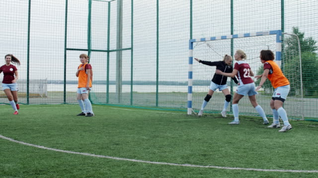 Woman shooting goal in soccer match Young woman shooting goal in professional soccer match, celebrating it, handspringing and hugging her team goal post stock videos & royalty-free footage