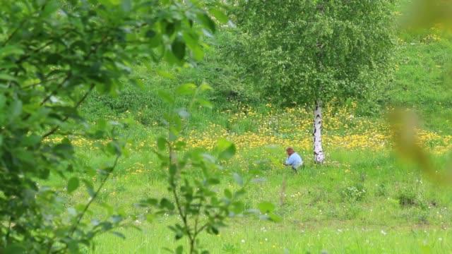 vídeos de stock, filmes e b-roll de uma mulher senta-se num prado entre as flores perto da árvore de vidoeiro e descansa. ele se levanta e sai. - bétula
