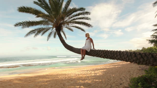 Woman sits on palm tree overlooking tropical beach video