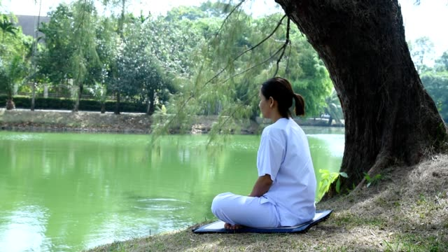 Woman sitting on green grass in a park beside the lake. Concept of calm and meditation. Woman sitting on green grass in a park beside the lake. Concept of calm and meditation. cross legged stock videos & royalty-free footage