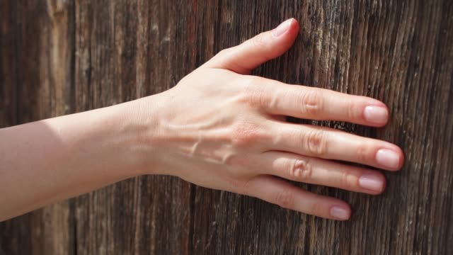vídeos de stock e filmes b-roll de woman sliding hand against old wooden door in slow motion. female hand touch rough surface of wood - tocar