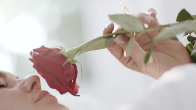 Woman smelling rose Close-up, young woman smelling red rose smelling stock videos & royalty-free footage