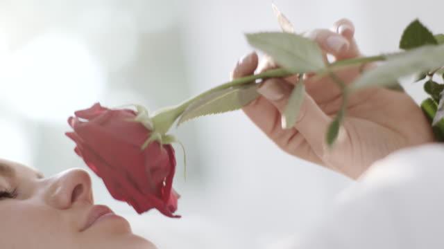 kadın kokulu gül - kokulu stok videoları ve detay görüntü çekimi