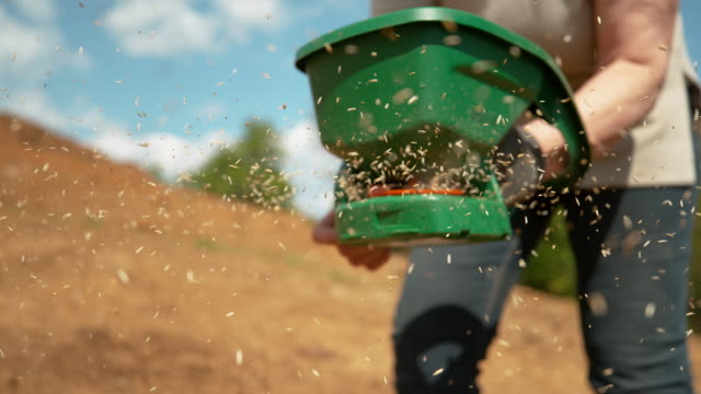 SLOW MOTION: Woman spinning a handle and sowing grass seeds across fertile land. SLOW MOTION, CLOSE UP, DOF: Unrecognizable woman spinning a small orange handle and sowing grass seeds across the fertile land. Female gardener sowing vegetable seeds on a sunny spring afternoon. sowing stock videos & royalty-free footage