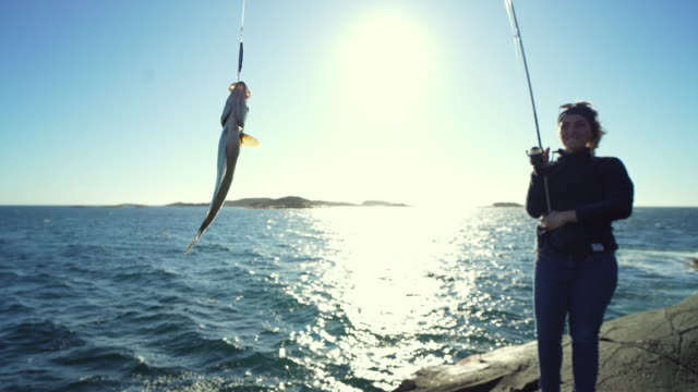 Woman spinning fishing in the sea with a rod, catch a pollock Woman spinning fishing in the sea with a rod, from the rocks fishing rod stock videos & royalty-free footage