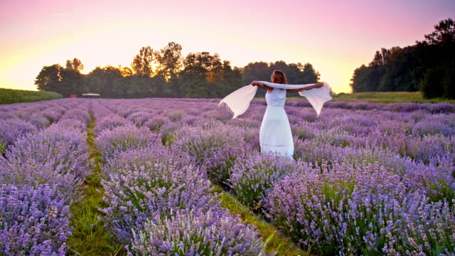 SLO MO Woman spinning in the field of lavender video