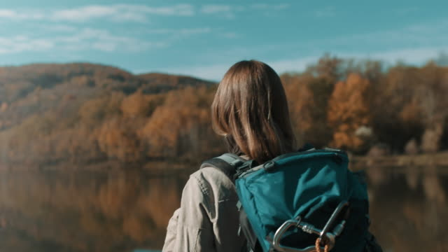 woman standing beside lake and looking at it - дикая растительность стоковые видео и кадры b-roll