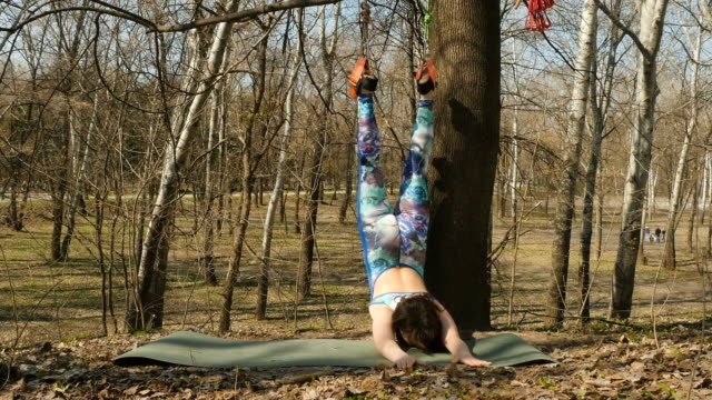 Woman stretches the body with aerogravity exercises on ropes Young woman practicing aerogravity in the park. The woman makes physical exercises on the ropes on tree. Flexible female hanging on the ropes and stretching her body and muscles. She's moving slowly and accuracy. arthropod stock videos & royalty-free footage