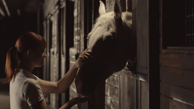 SLO Missouri DS femme des caresses cheval dans le centre équestre stables at nuit - Vidéo