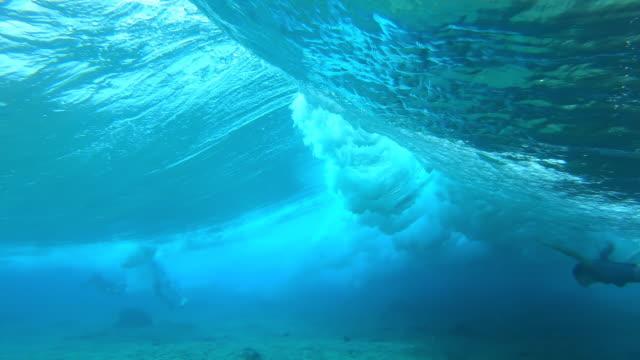 stockvideo's en b-roll-footage met de surfer van de vrouw duikt onder de golf - ocean under water