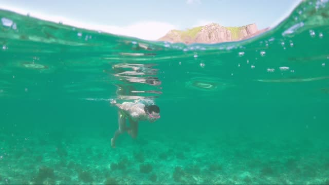 woman swimming in the beautiful sea of mauritius protected by the reef on the indian ocean - isole mauritius video stock e b–roll