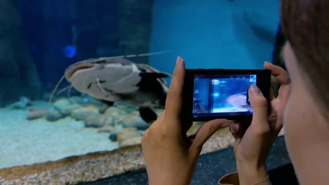 Woman take a photo in oceanarium