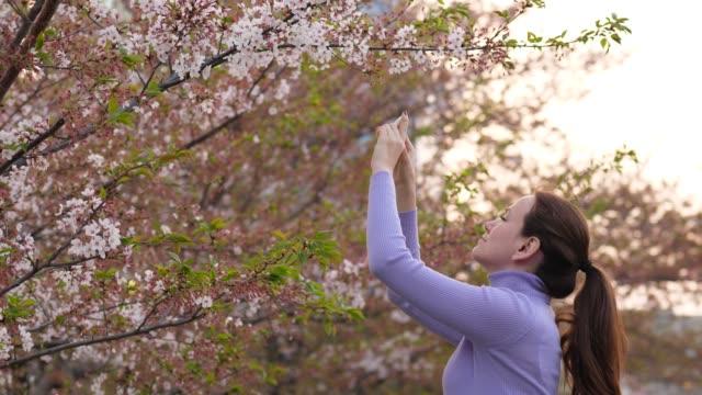 女人拍攝櫻花,美麗的哈納米時間在東京 - {{asset.href}} 個影片檔及 b 捲影像