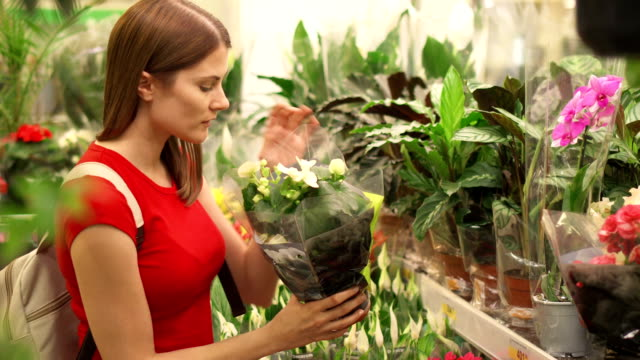 Woman takes closer look at array of indulging flowers before picking up pot to look at and smell video