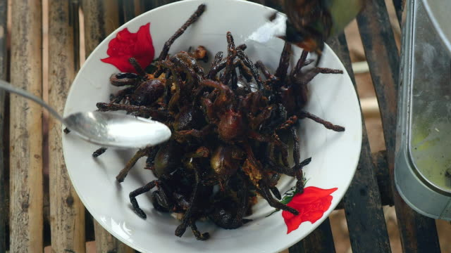 女性鍋から深い揚げたタランチュラ、小鉢 (クローズ アップ) に入れて - 油料理点の映像素材/bロール