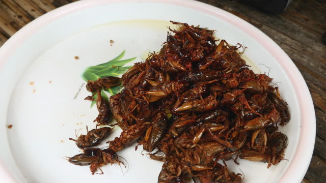 Woman taking fried grasshoppers out of a wok and putting them on a bowl video