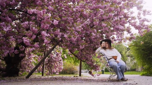 vídeos de stock, filmes e b-roll de mulher que toma o selfie a árvore de cereja de florescência - largo descrição geral